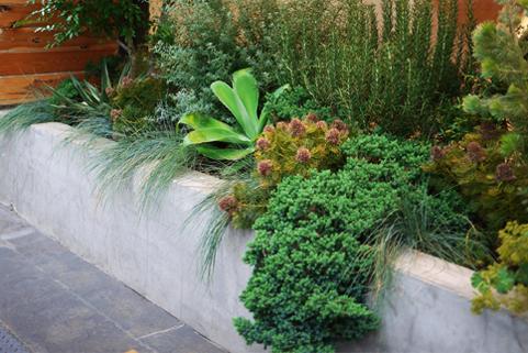 レミルフォイユドゥリベルテの緑化・造園